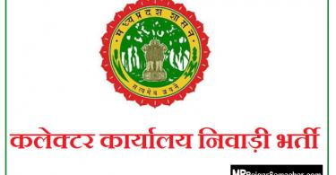 Collector Office Niwari Recruitment