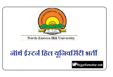 NEHU Recruitment